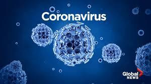CORONAVIRUS: Il Cartone è un Materiale Inospitale!